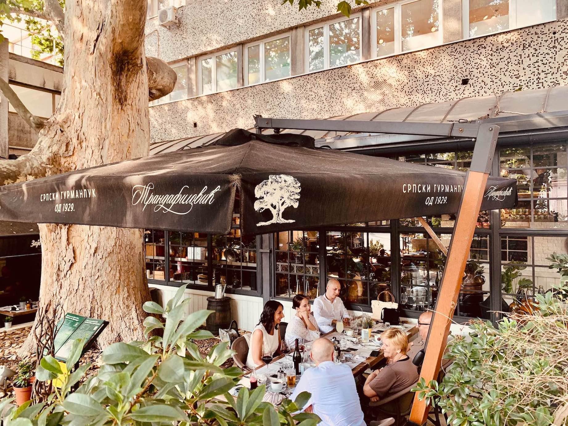 The Tree Restaurant Belgrade.