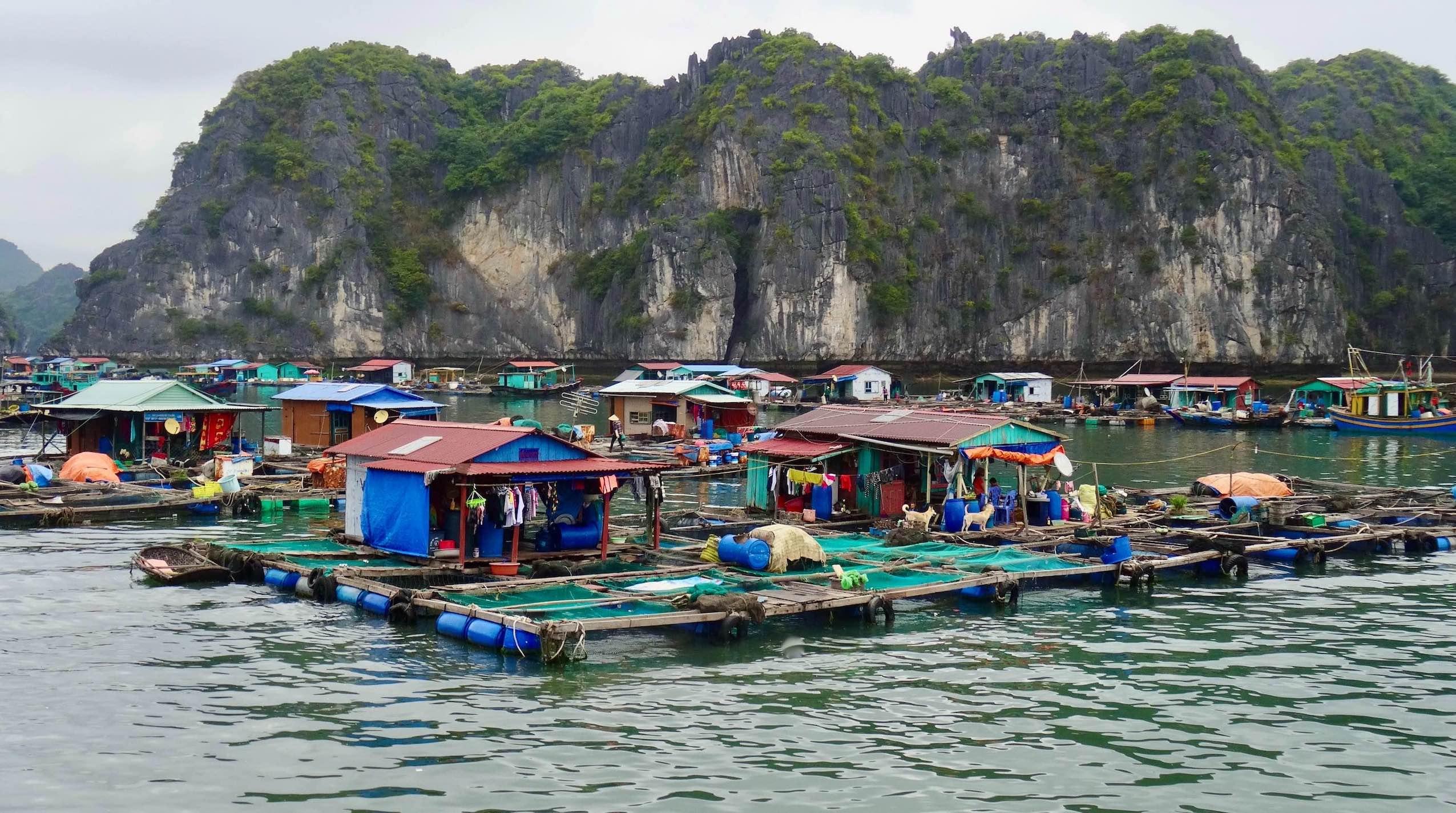 Floating Village Lan Ha Bay.