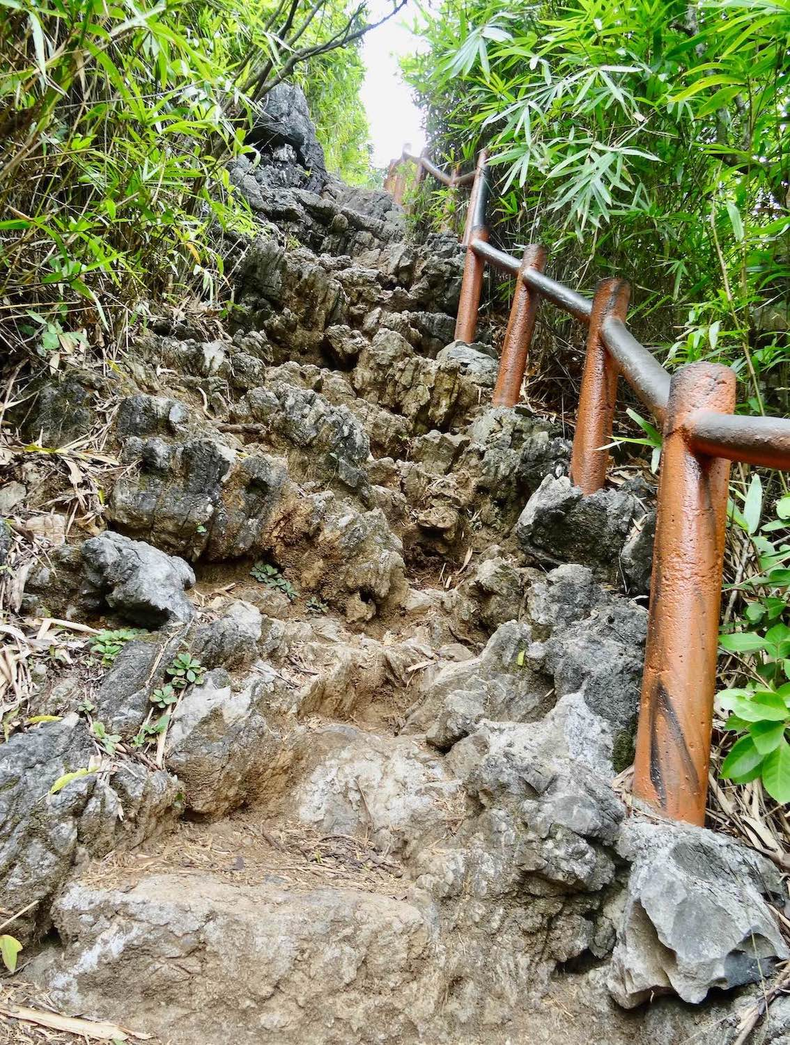 Hiking in Cat Ba National Park.
